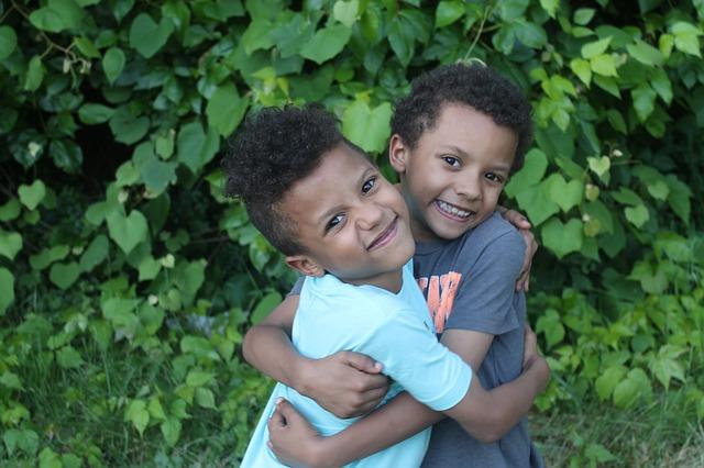 двуяйцевые близнецы