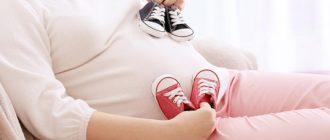 Как развивается двойня в 12 недель беременности