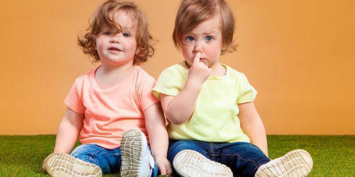 отношения между близнецами и двойняшками